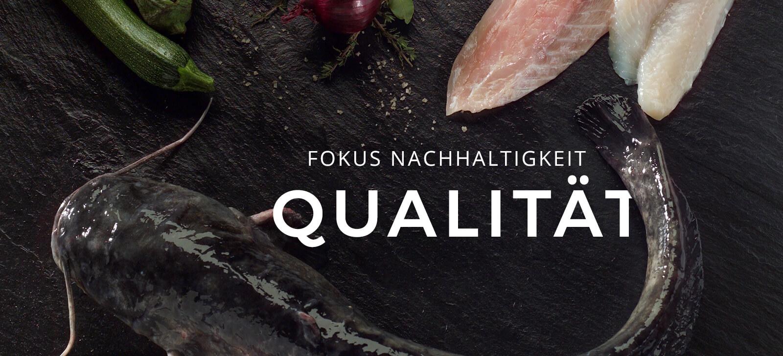 Fokus Nachhaltigkeit - Qualität